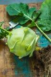 Le chou-rave vert frais avec le vert laisse tout préparé Photographie stock