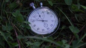 Le chronomètre se trouve sur l'herbe verte, concept folâtre banque de vidéos