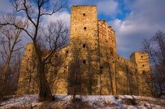 Le château dans Drzewica, Pologne Photos libres de droits