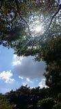 Le ciel Images stock