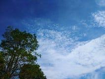 Le ciel bleu Image libre de droits