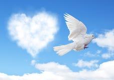 Le ciel bleu avec des coeurs forment les nuages et la colombe photos stock