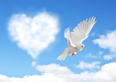 Le ciel bleu avec des coeurs forment les nuages et la colombe photographie stock libre de droits