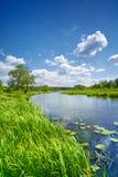 Le ciel bleu de paysage de rivière de drapeau doux d'été opacifie la campagne Photos stock