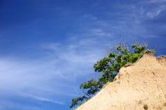 Le ciel bleu et la falaise clairs font une pointe avec un arbre Photos stock