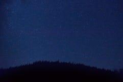 Le ciel bleu-foncé de nuit avec beaucoup se tient le premier rôle Photographie stock libre de droits