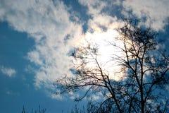 Le ciel bleu opacifie le papier peint de fond de soleil Photos libres de droits