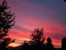 Le ciel brûle photos libres de droits