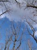 Le ciel d'automne Image libre de droits