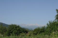 Le cime del Caucaso visibile fra gli alberi verdi Fotografie Stock Libere da Diritti