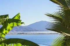 Le cime delle palme contro il mare blu con una catena montuosa sull'orizzonte Mare di bella vista circondato dalle palme Immagine Stock