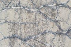 Le ciment de fissuration parquette des milieux Photo stock