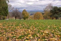 Le cimetière national de Willamette fond l'Orégon images libres de droits