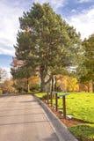 Le cimetière national de Willamette fond l'Orégon photographie stock libre de droits