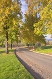 Le cimetière national de Willamette fond l'Orégon photo stock
