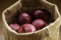 Le cipolle in agricoltori insaccano fotografia stock