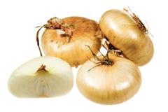 Le cipolle hanno affettato isolato su bianco Immagini Stock