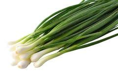 Le cipolle verdi fresche Immagini Stock