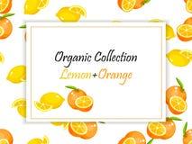 Le citron coloré de vintage et l'affiche orange de label dirigent l'illustration illustration de vecteur