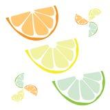 le citron découpe le vecteur en tranches Image libre de droits