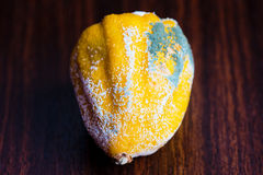 Le citron dans le moule sur la table Photos stock