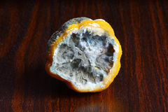 Le citron dans le moule sur la table Image libre de droits