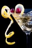 Le citron et la canneberge éclaboussent le cocktail Image stock