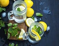 Le citron frais a infusé les boissons de l'eau ou de soude en verres avec la menthe, l Photographie stock libre de droits