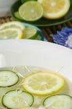 Le citron imbibent Images libres de droits