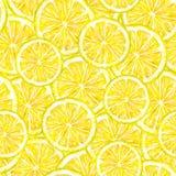 Le citron jaune porte des fruits des segments Retrait d'aquarelle Travail manuel Fruit tropical Nourriture saine Configuration sa Images libres de droits