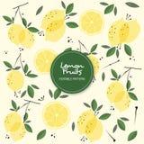 Le citron porte des fruits modèle Editable de fond illustration libre de droits