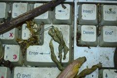 Le clavier est vieux sale sur la décharge image libre de droits