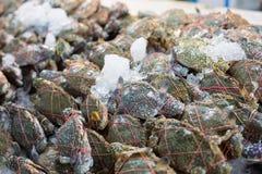 Le client frais de crabe bleu choisissent la matière première  photographie stock