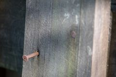Le clou rouillé doit être martelé de nouveau dans la barrière en bois photos stock
