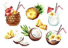 Le cocktail de colada de Pina a placé avec la noix de coco et l'ananas Illustration tirée par la main d'aquarelle, d'isolement su Images stock