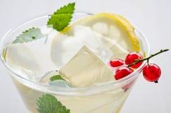 le cocktail refroidi avec la menthe, les pailles, un citron et la groseille rouge/a refroidi le cocktail avec la menthe, les pail photo libre de droits