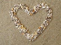 Le coeur a arrangé des Seashells Image stock
