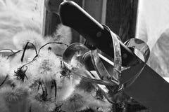 Le coeur brisé, amour perdu, le coeur brisé, vieux châssis de fenêtre Image stock