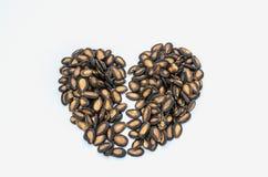Le coeur brisé de la graine de citrouille Photos libres de droits