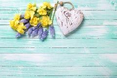 Le coeur décoratif et le ressort jaune et bleu frais fleurit sur le TU Photo libre de droits