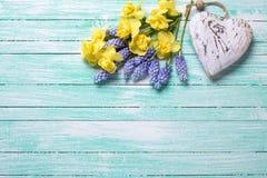 Le coeur décoratif et le ressort jaune et bleu frais fleurit sur le TU Photographie stock