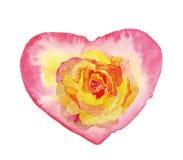 Le coeur d'aquarelle a monté Photographie stock libre de droits