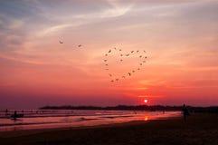 Le coeur d'oiseaux silhouette le vol au-dessus de la mer contre le coucher du soleil Photographie stock