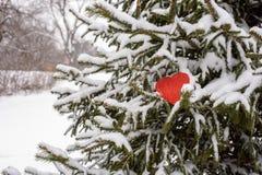 le coeur de papier rouge se reposant sur la neige a couvert la branche de pin dehors Images stock