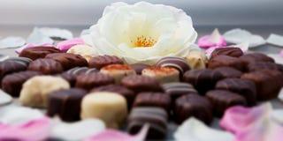 Le coeur de truffes de chocolat romantiques et de roses blanches forment l'installation horizontale Photos libres de droits