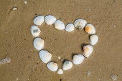 Le coeur des coquilles de coque se trouve sur une plage sablonneuse photos libres de droits