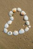 Le coeur des coquilles de coque se trouve sur une plage sablonneuse images stock