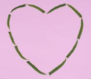 Le coeur des feuilles vertes de fougère Images libres de droits