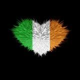 Le coeur du drapeau de l'Irlande Illustration Libre de Droits
