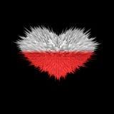 Le coeur du drapeau de la Pologne Illustration Stock